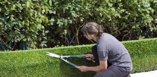 Urządzenia akumulatorowe do ogrodu
